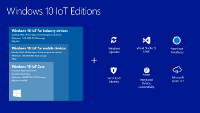 SISTEMA OPERATIVO WINDOWS 10 IOT